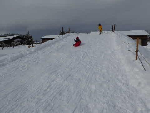 雪でソリ遊び
