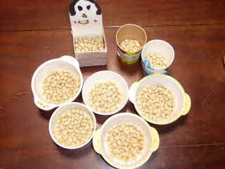 豆撒き用の豆